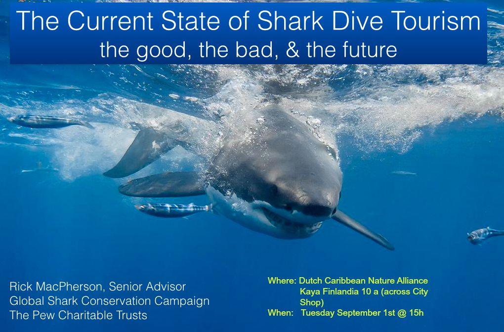Shark dive tourism presentation