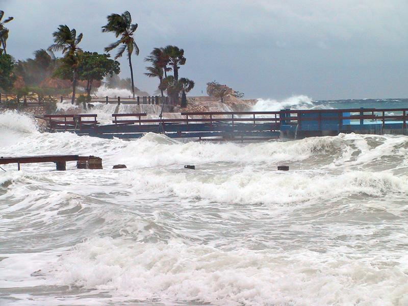 storm-dolfi-debrot